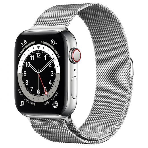 Apple Watch Series 6 (GPS + Cellular) 44mm Silver Stainless Steel Case with Milanese Loop(M07M3)
